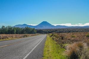 Tongariro Park