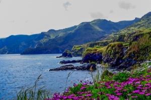 Flores Azores Coastline