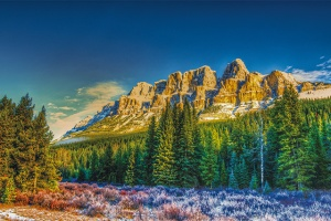 Majestic Landscape USA